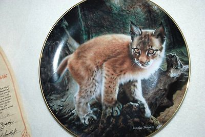 Baby Wild CAT Exploring World - Hamilton Collector PLATE by Charles Frace P39 yy