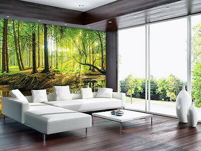poster tapeten fototapete wandbild tapeten wald natur baum. Black Bedroom Furniture Sets. Home Design Ideas