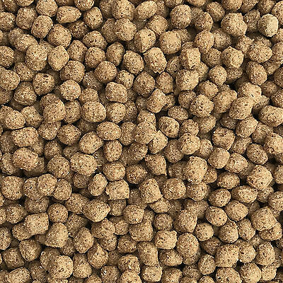 10Kg Premium Wheatgerm Winter Pond Koi Pellets Floating with Spirulina Vit C & E
