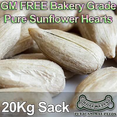 20KG Sunflower Hearts GM FREE Bakery Grade Dehulled Kernels for Wild Bird Food