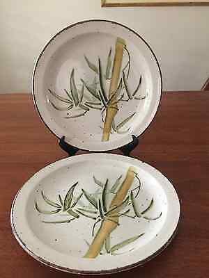 SET of 2 ~ Rangoon Midwinter Stonehenge DINNER PLATES Bamboo Vintage  MINT!