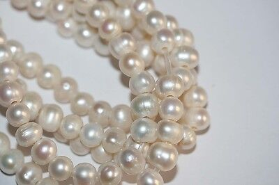 "15 ""Fresh Water Round  Pearl Beads 10-11m  2.5mm Hole"