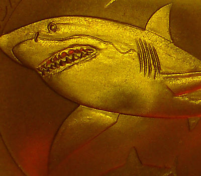 2014 Great White Shark Pcgs First Strike Ms70 1/2 Oz Silver Troy Ounce #b