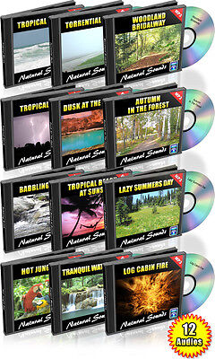 12 Hours of Natural Sounds with Master Resale Rights on DVD