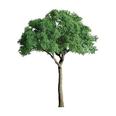 "Jtt Scenery 94283 Professional Series 3/4"" Green Jacaranda Tree  6/pk   Z-Scale"