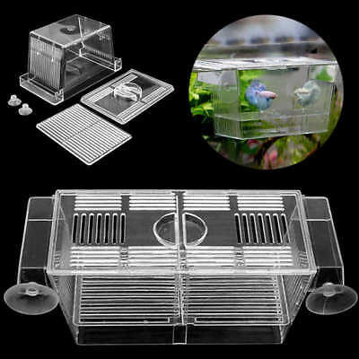Aquarium Pet Fish Tank Guppy Double Breeding Breeder Rearing Box Hatchery Clear