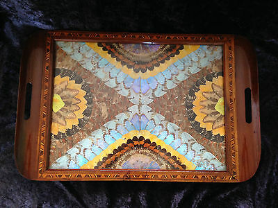 Beautiful Unique Carlos Zipperer Sobr Butterly Wing Mosaic Wooden Serving Tray