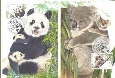 Australia-China-Joint issue 2 cards + stamps (1995)-Endangered Panda + Koala