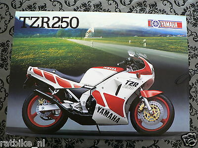 Y175 Yamaha Brochure Tzr250 1987 ? English 2 Pages ,is Little Damaged