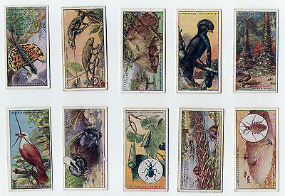 1924 LAMBER & BUTLER WONDERS OF NATURE(25 CARDS)(used,no.4 fair,the rest good)