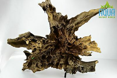 (A-5696)  Oak Bogwood Aquarium Wood (Red moor) Size XXL