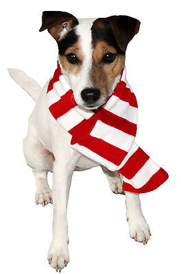 """Armitage Stripy Scarf 650mm (25"""") Colourful Xmas Scarf For Dogs"""