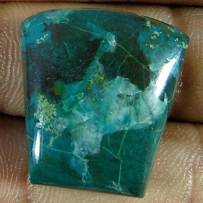 100% Natural Mind Blowing Quality Chrysocolla Fancy Cabochon 39.55Cts