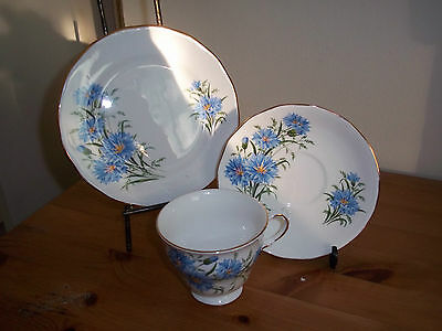 Vintage Queen Anne bone china plate, cup and saucer trio in cornflower pattern.