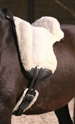 Barefoot fur saddle, natural horsemanship
