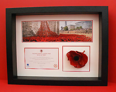 London Poppy Display Frame For Tower of London Ceramic Poppy in Black Wood