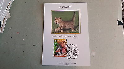 Carte maximum 1er jour LE CHATON - PARIS - 2006