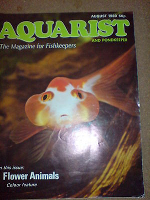 Aquarist And Pondkeeper August 1980