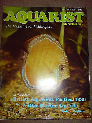 Aquarist And Pondkeeper January 1981
