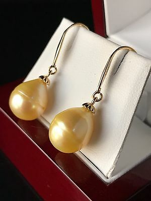 14Ct Gold Golden/yellow Genuine South Sea Pearl Earrings - 703