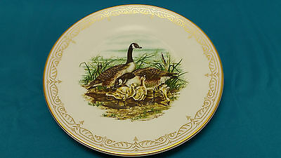 The Edward Marshall Boehm Water Bird Plate Collection Canada Geese Mint Box