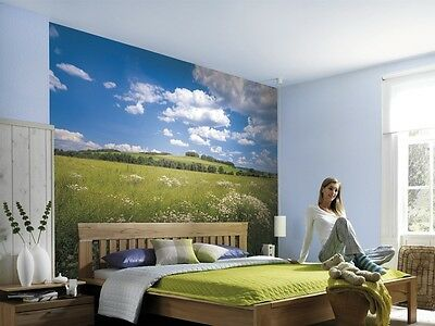 Wall Mural Photo Wallpaper MEADOW GREEN BLUE NATURE Bedroom Decor Art 368x254cm