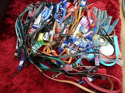 Wholesale Joblot of 70 pet items including dog collars