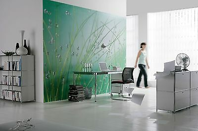 Wall Mural Photo Wallpaper AQUA GREEN Living Room & Bedroom Decor Art 368x254cm