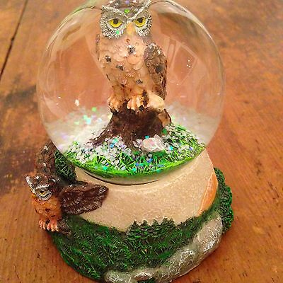 Beautiful Glass Owl Snowglobe