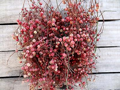Dried Pepperberries - Natural Pink Color - 120gr  FREE SHIPPING!