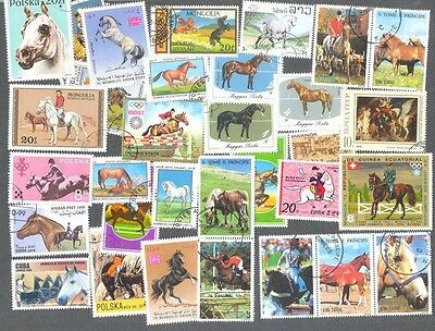 Horses on stamps collection of 300 all different mainly medium/large-colourful