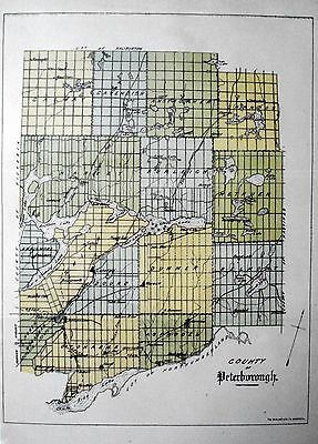Peterborough County Ontario Canada Rare 1881 org map Ont Agricultural Commission