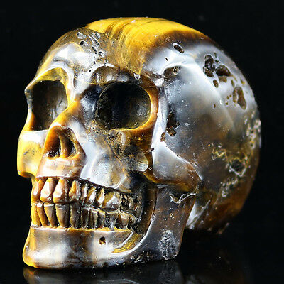 """2.88""""Gold Tiger's eye Carved Crystal Skull, Realistic,Crystal Healing,D41"""