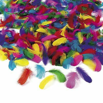 600 pc. Wholesale Lot Bulk Feathers Assorted Colors Art Crafts Kids Party  Game 424608bcb8f0