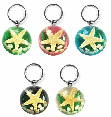 Real Sealife Scene Key Ring/Chain Charm - Bordered Starfish Beach