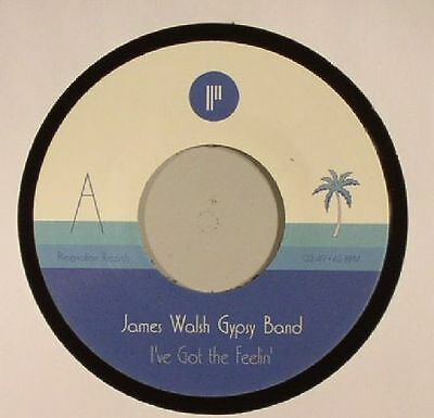 "JAMES WALSH GYPSY BAND - I've Got The Feelin' - Vinyl (7"")"