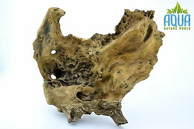 (A-5172)  Oak Bogwood Aquarium Wood (Red moor) Size L