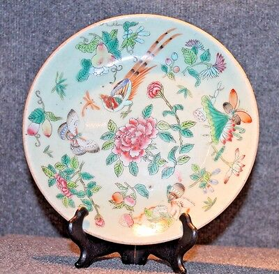 "Antique 19C Chinese Export Porcelain Celadon Famille Rose Butterfly 9"" dish"