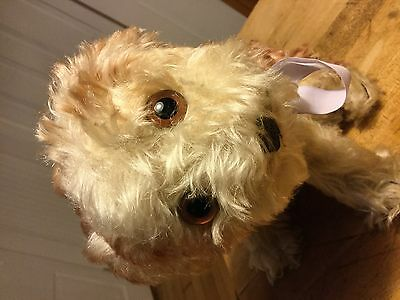 """Vintage Steiff Molly Dog Large 9"""" Size No Id Excellent Condition So Cute!"""