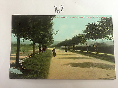 Aberyswith Plas Crug Walk And Old Castle Postcard 1900's