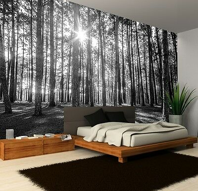 Wall Mural Photo Wallpaper SUNNY SPRING MORNING FOREST Bedroom Decor 335x236cm