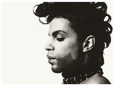 Prince - *POSTER*  - Must See Image - AMAZING PICTURE - Rare Giclee Print