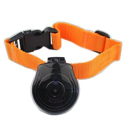 Digital Pet Collar Cam Camera Mini Monitor For Dog Cat Puppy Black ED