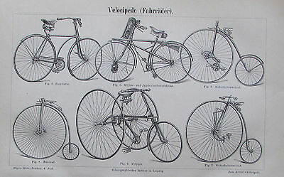1890 VELOCIPEDE FAHHRÄDER alter Druck Antique Print Lithografie