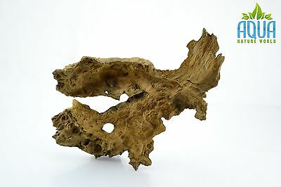 (A-5664)  Oak Bogwood Aquarium Wood (Red moor) Size M