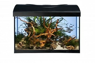 Aquarium Set Diversa-StartUp-LED Set- 40 cm komplett  Einsteiger Set Glasbecken
