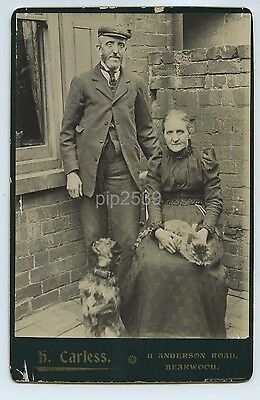 Man & Woman With Dog & Cat - Cabinet Photo By Carless Bearwood c1890s