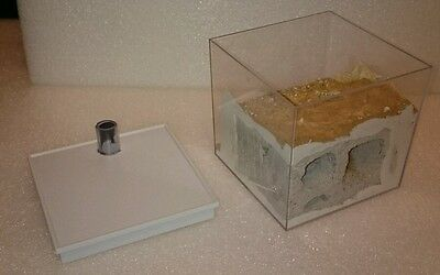 For live queen ants / colony formicarium nest farm arena box ytong outworld