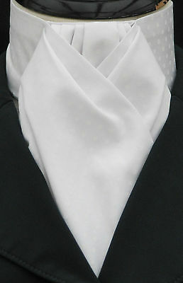 Ready Tied White on White Pin Dot Cotton Riding Stock - Dressage Hunting Show