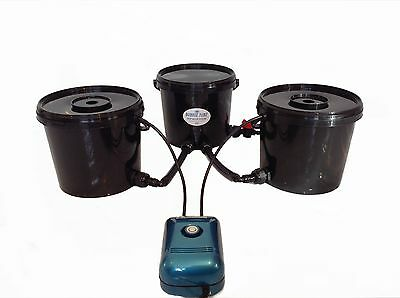Deep Water Culture 2 Pot Bubble Tubz Hydroponic System Dwc 16L Not Alien, Rdwc